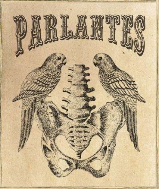 PARLANTES-3.jpg